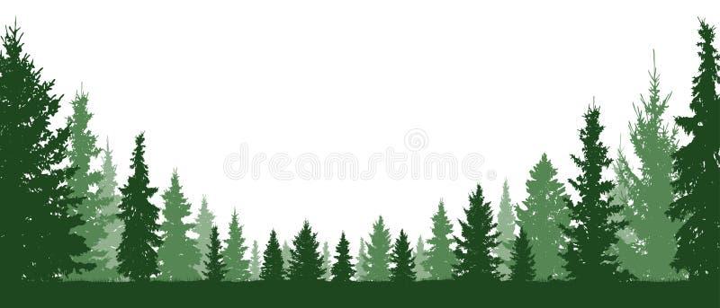 Waldimmergrün, Koniferenbäume, Schattenbildvektorhintergrund vektor abbildung