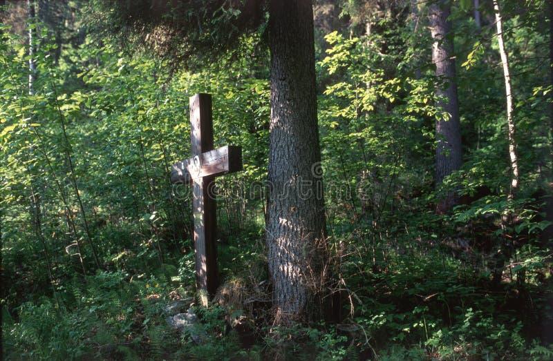Waldkreuz lizenzfreies stockfoto