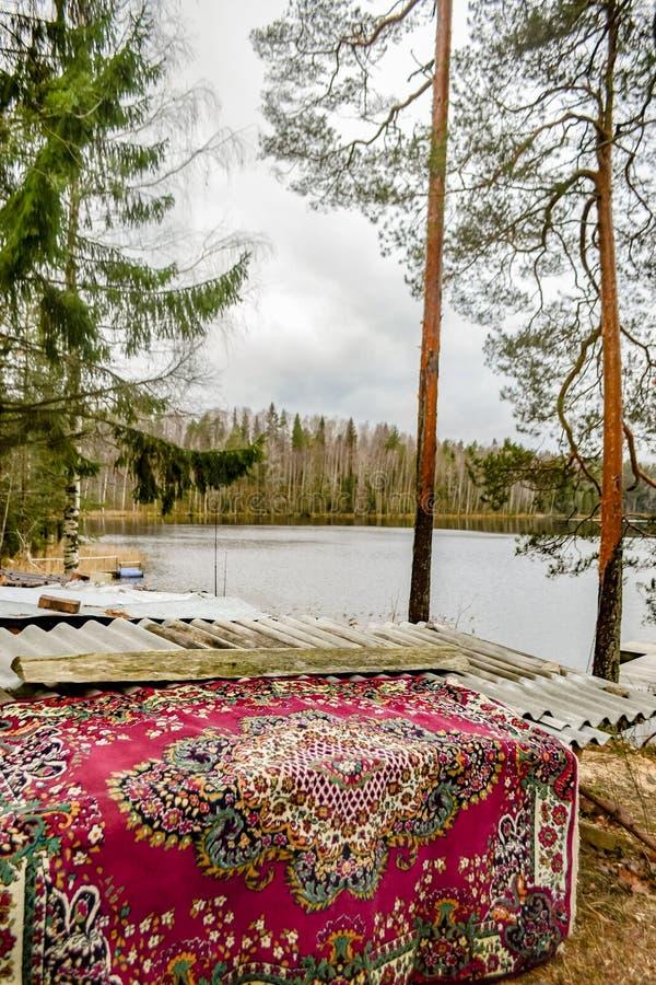 Waldlandschaft mit altem Teppich und Seeblick stockfotos