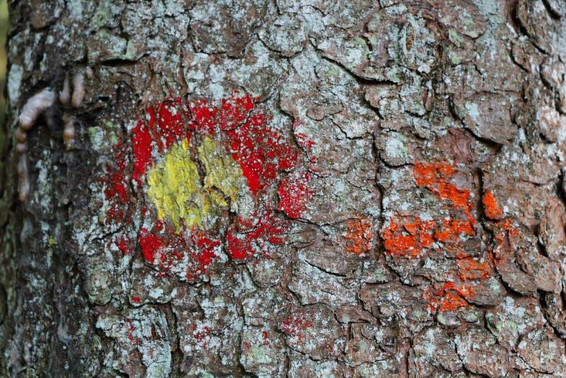 Waldmarkierungen lizenzfreie stockbilder