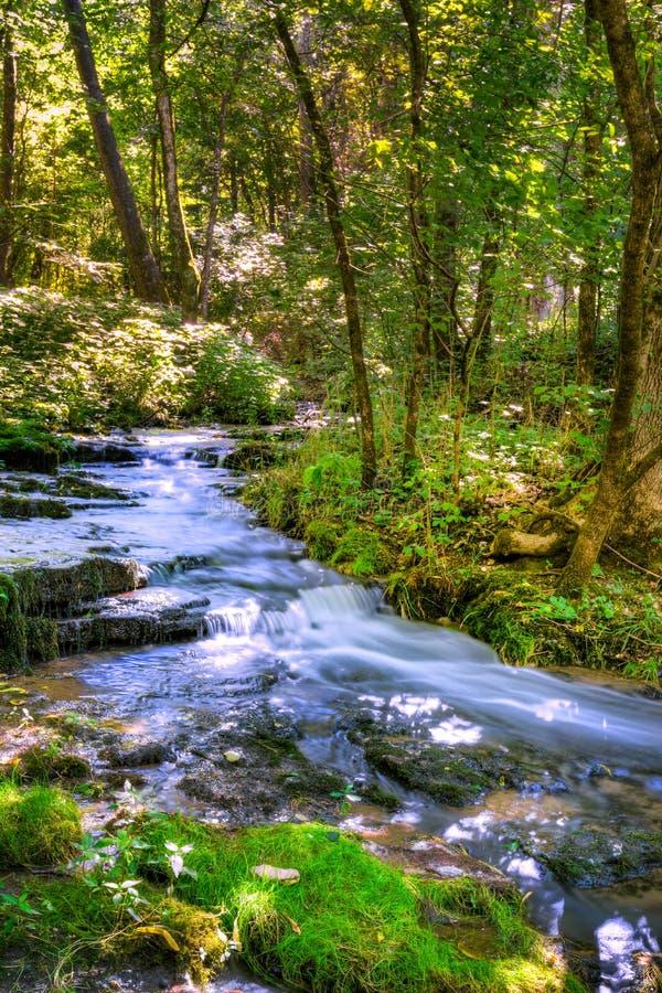 Waldnebenfluß lizenzfreies stockbild