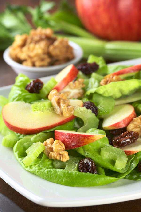 Waldorf Salad royalty free stock image