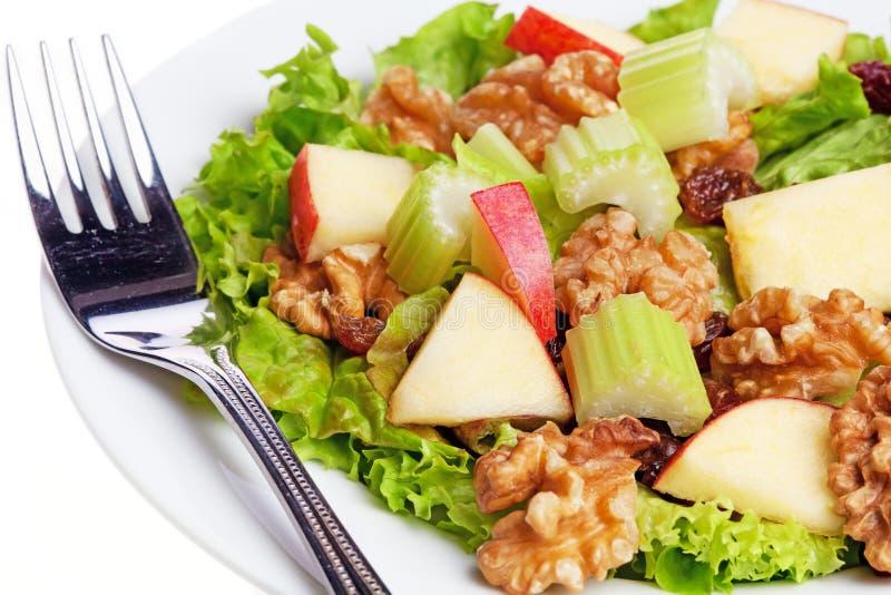 Waldorf salad stock images