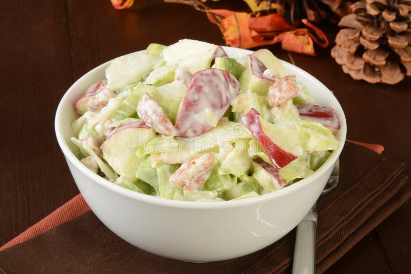 Waldorf salad royalty free stock photos