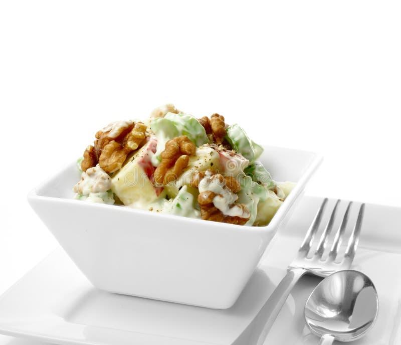 Waldorf Salad 3 royalty free stock photos