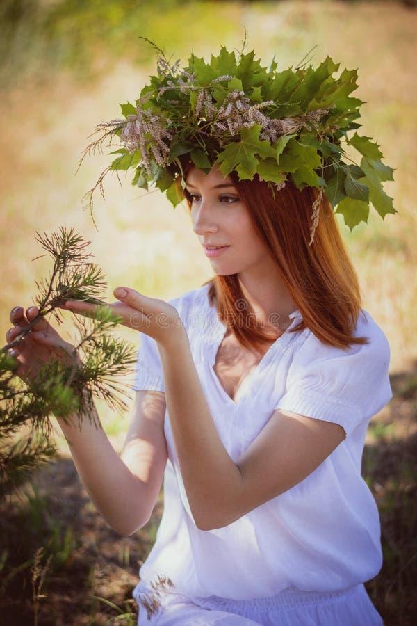 Waldschutz lizenzfreies stockfoto