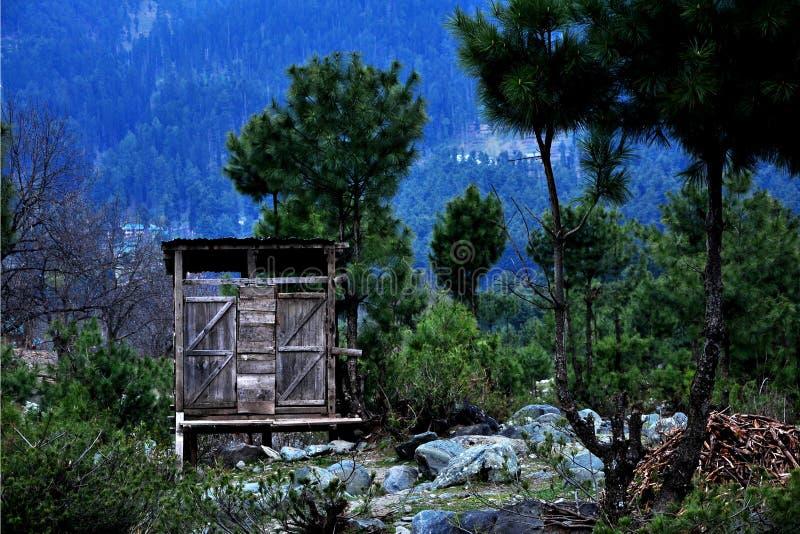 Waldschutz lizenzfreie stockfotos