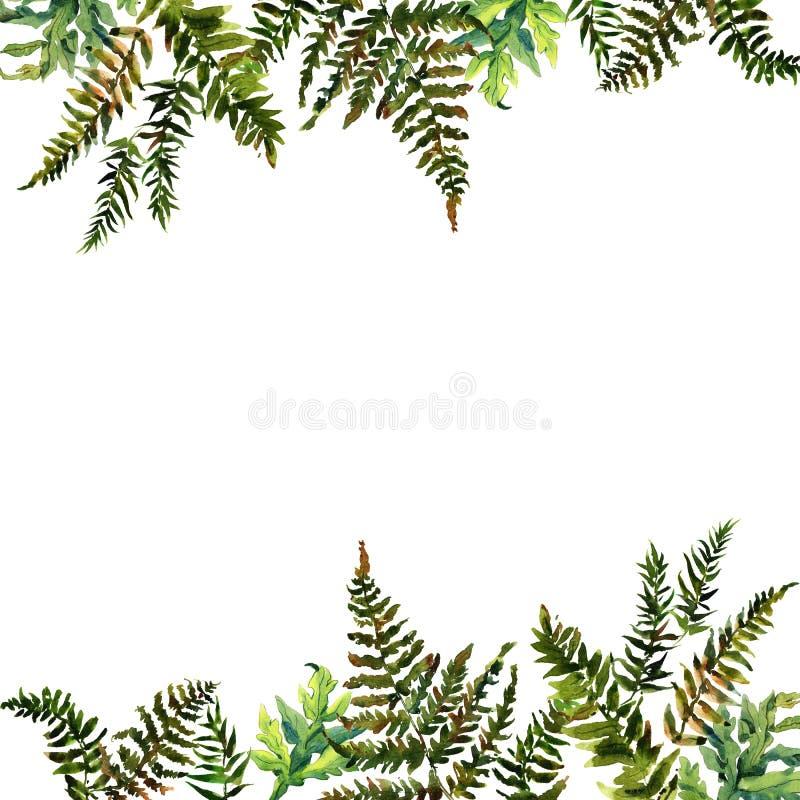 Waldseeschwalbenaquarellkranz-Rahmendesign mit Platz für Datum und Text Adlerfarngrasgrüngrenze, Waldfarnillustration lizenzfreie abbildung