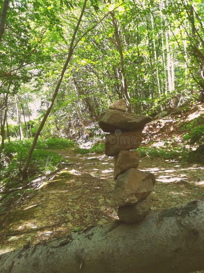 Waldsteine stockfoto