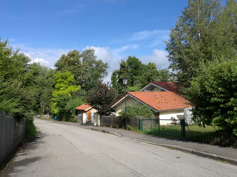 Waldstraße stockbild