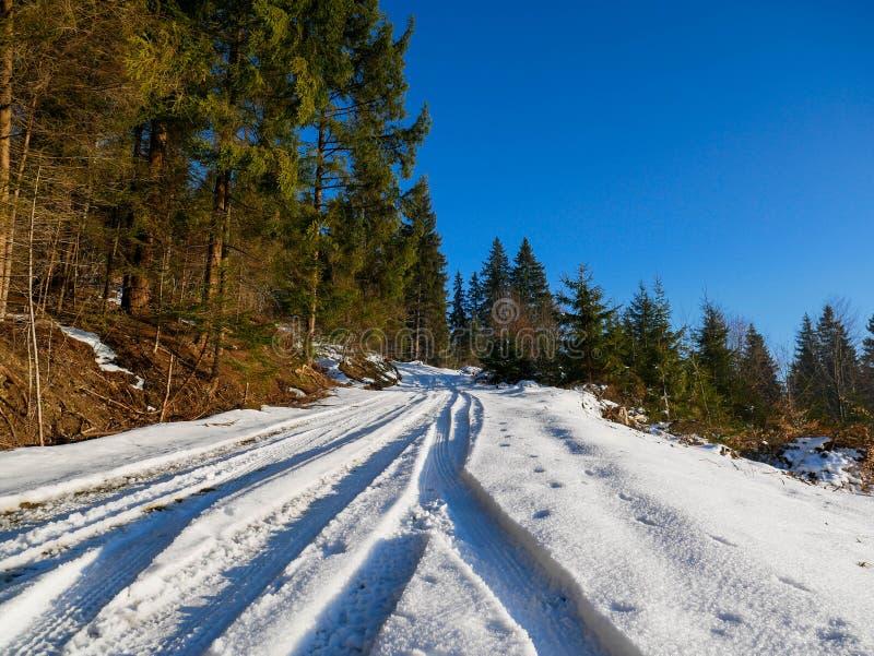 Waldstraße mit schneebedeckten Pkw-Pisten, die zum Gipfel des Berges führen lizenzfreies stockfoto