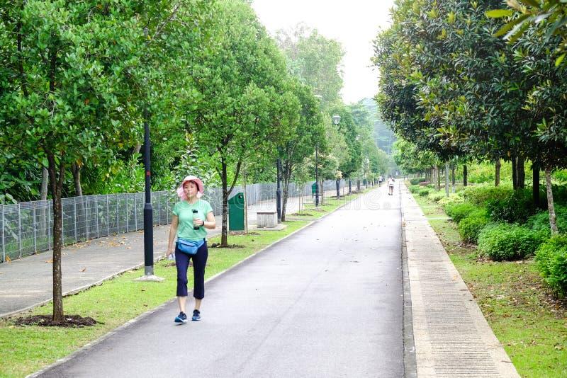 Waldufergegend Singapur stockfotos