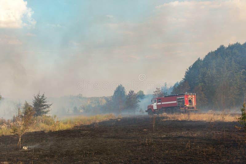 Waldverheerendes feuer wegen des trockenen windigen Wetters Löschfahrzeug mit den Feuerwehrmännern, die Flamme, blauen Himmel bed lizenzfreie stockbilder