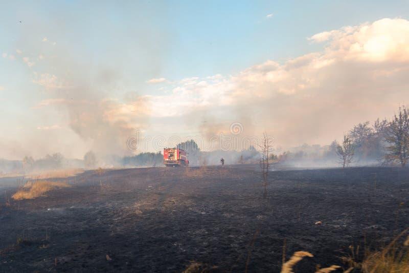 Waldverheerendes feuer wegen des trockenen windigen Wetters Löschfahrzeug mit den Feuerwehrmännern, die Flamme, blauen Himmel bed stockfoto