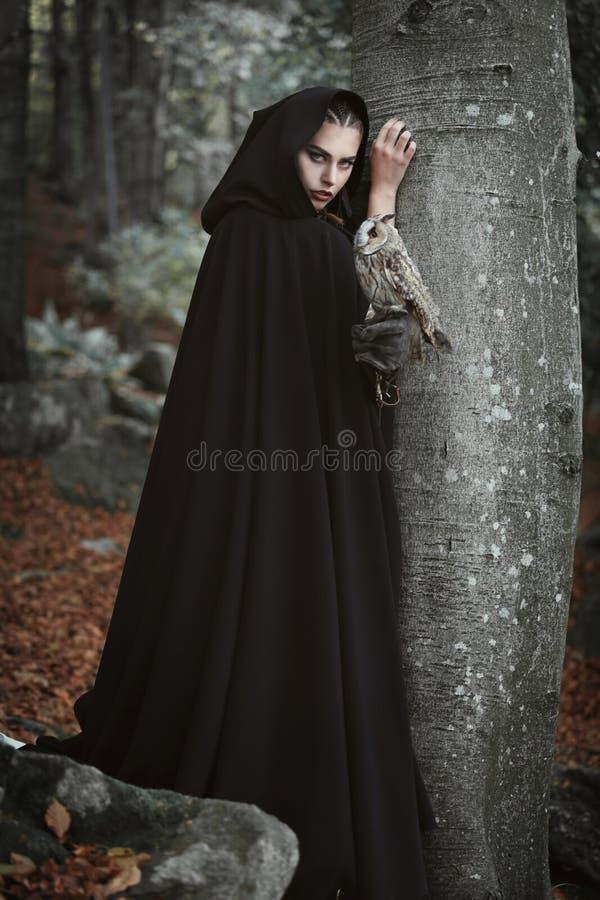 Waldwächter mit grauer Eule stockfoto