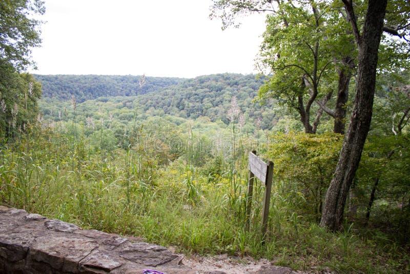 Waldwandernde Spur lizenzfreie stockfotos
