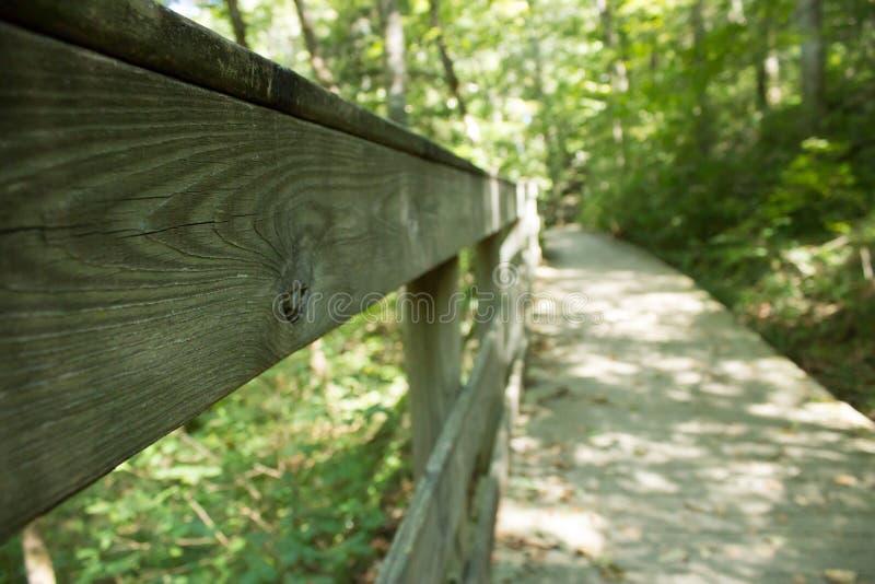 Waldwandernde Spur lizenzfreie stockfotografie