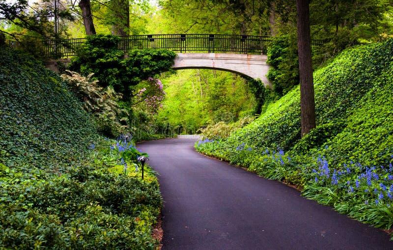 Download Waldweg Unter Einer Brücke An Longwood Gärten, PA Stockbild   Bild  Von Einfach