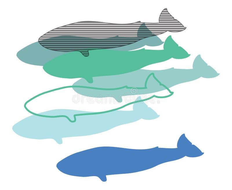Wale, Illustration digital, stockfotografie