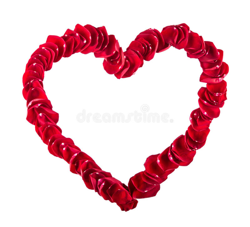 Walentynka dzień, dzień ślubu Piękny serce czerwieni róży płatki odizolowywający na bielu Walentynki serca granica nad bielem obraz stock