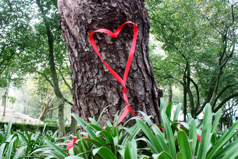 Walentynka faborku serce obraz stock