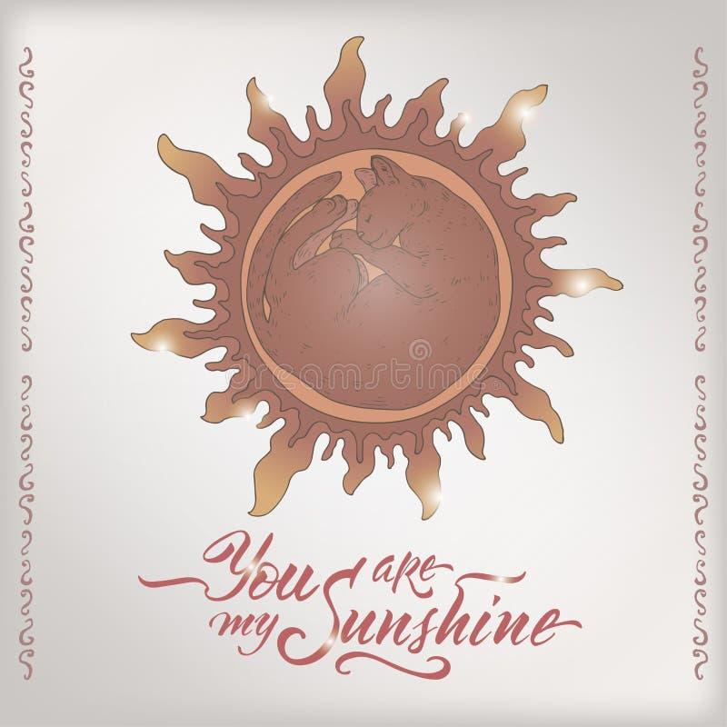 Walentynka koloru romantyczna karta z sypialnym kota jaśnieniem jak słońca i muśnięcia literowanie saing Ciebie jest mój światłem royalty ilustracja