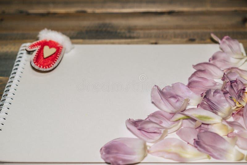 Walentynki skład: biały prześcieradło papier i mali płatki na drewnianym tle kierowi i kwiat fotografia royalty free