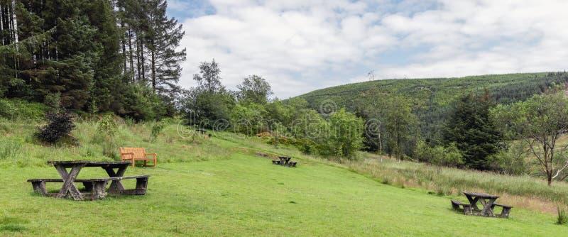 Wales bygdsikt av picknickbänkar i Hafren Forest Park i sommar royaltyfria bilder
