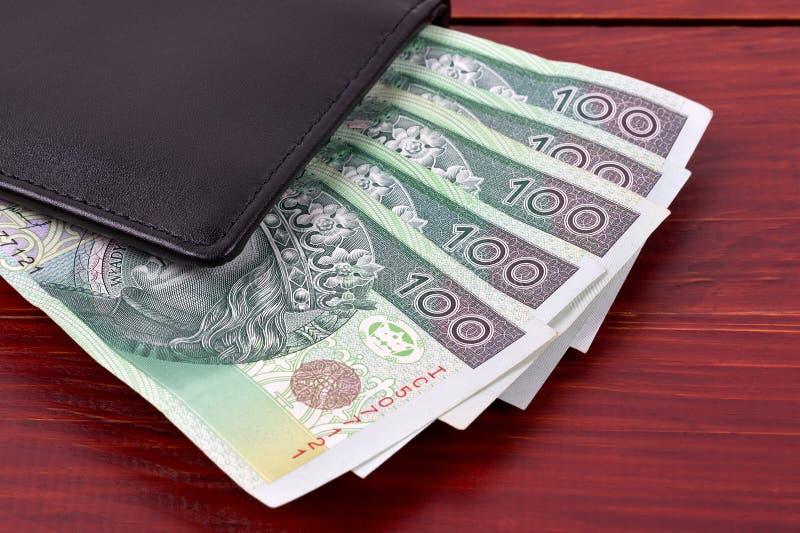 Walet mit polnischem Geld lizenzfreies stockbild