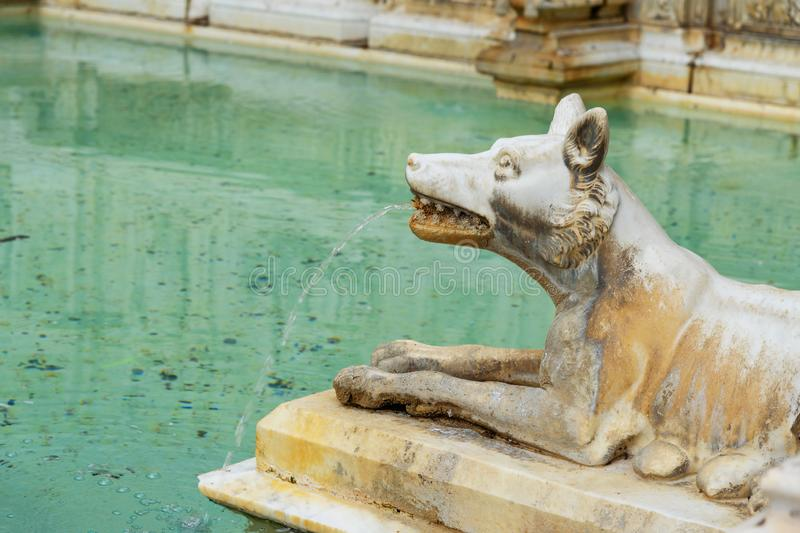 She walf detail of Fonte Gaia is monumental fountain in Piazza del Campo in Siena. Italy royalty free stock photography