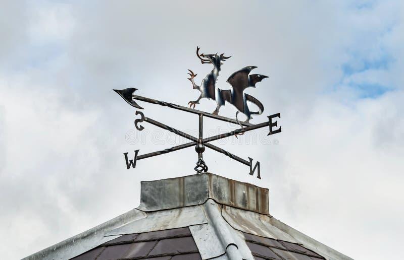 Walijski smok - Pogodowy Vane obrazy royalty free