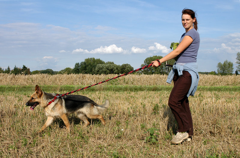 Download On walk stock photo. Image of pets, outdoor, walk, smile - 1153028