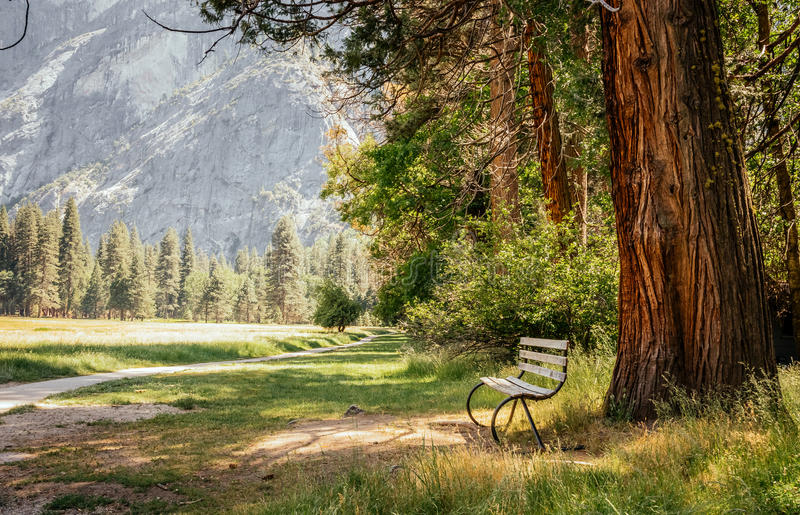 Walk along the picturesque Yosemite Park. A lonely bench and majestic nature stock photos