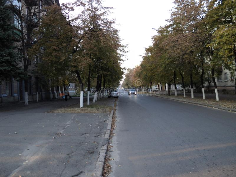Walk along the street in the city in the autumn day. Walk along the street in the city in the autumn afternoon high old trees road stock photo