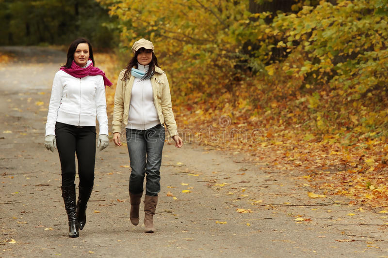 Download Walk In The Autum Stock Images - Image: 11502534