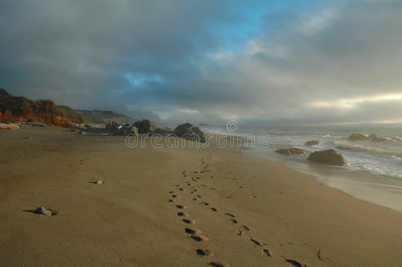 A walk on the beach royalty free stock photo