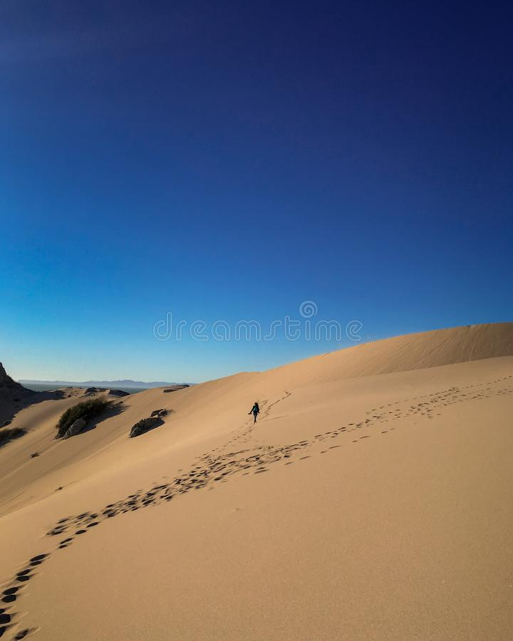A walk in the desert royalty free stock photos