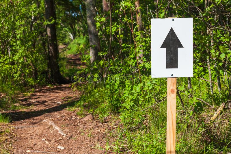 Walk direction sign with black arrow on white. Plate mounted on wooden pole stands near empty trail in summer forest royalty free stock image