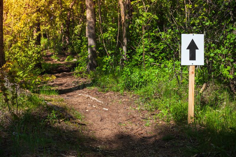 Walk direction. White sign with black arrow. Mounted on wooden pole near trail in summer forest stock photo