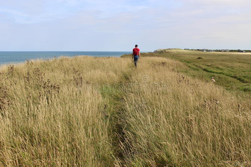 A walk on the dunes, Denmark, Europe. A man walks on the dunes by the North Sea, between Lokken and Lonstrup, Jutland, Denmark stock photography