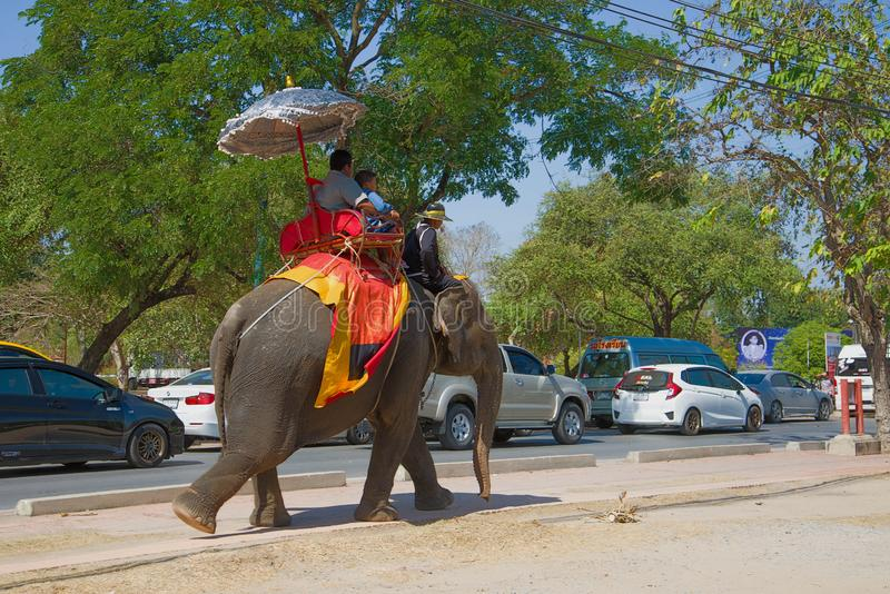 Walk on an elephant on the city street, Ayutthaya. AYUTTHAYA, THAILAND - JANUARY 01, 2017: Walk on an elephant on the city street stock images