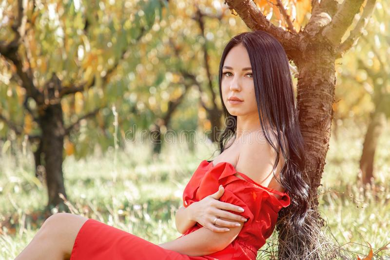 Walk in the garden. A brunette woman in a red dress sits on the grass, leaning on the trunk of a tree, and poses holding the stock photography