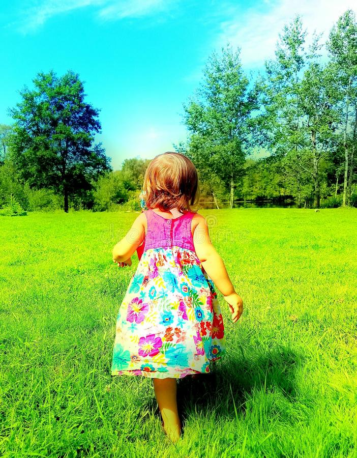 A walk in the meadow stock image