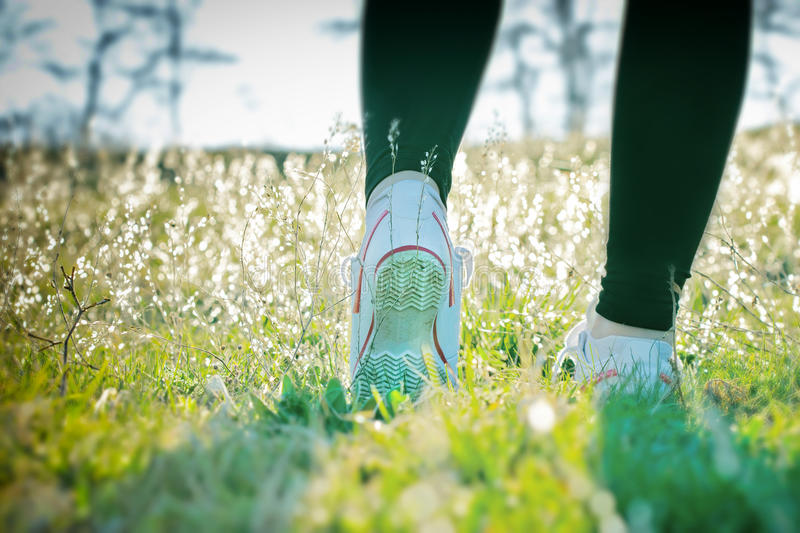 Walk in the morning dew. Walk outdoors on the fresh air in early morning royalty free stock images