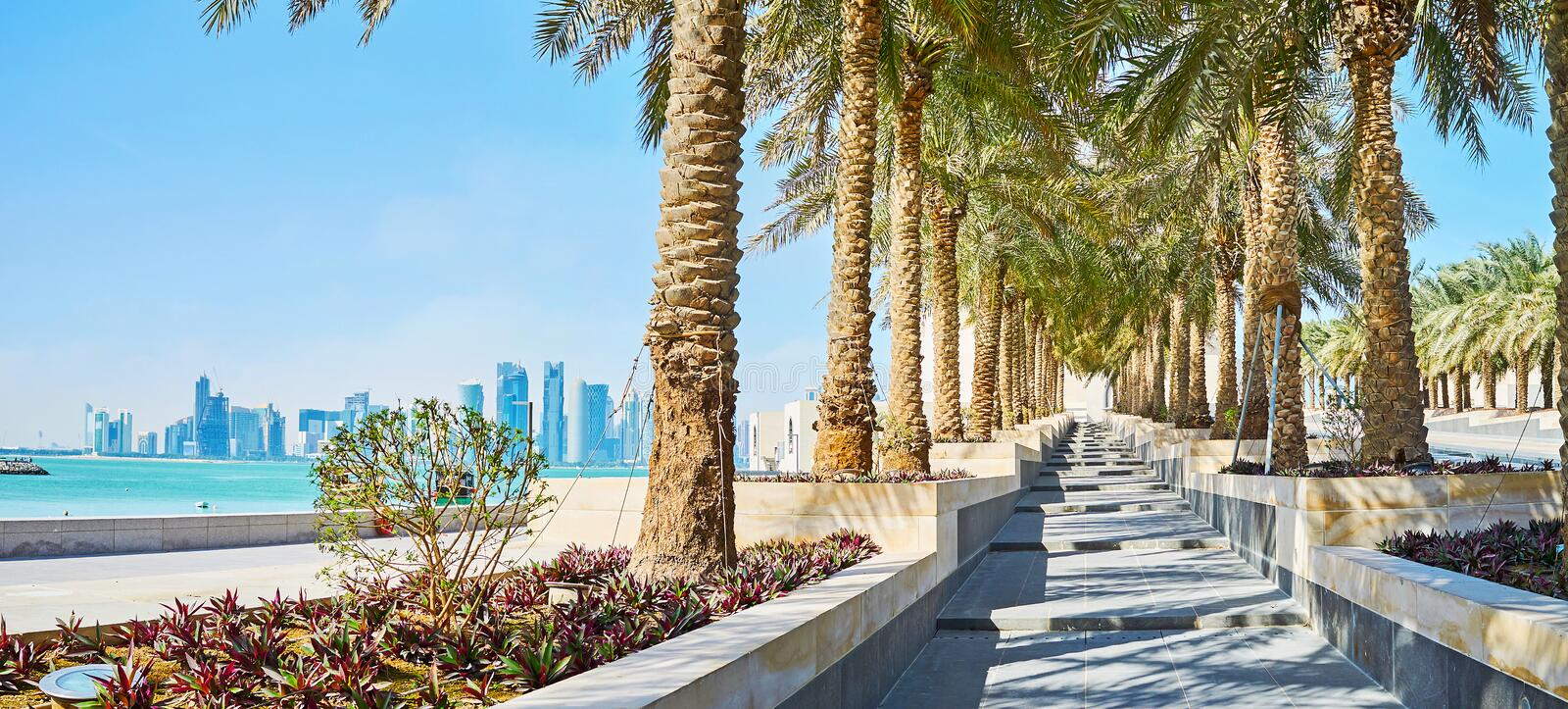 The seascape through the greenery, Doha, Qatar. The walk in Museum park with aview on skyscrapers of the West Bay and the bright blue waters of Persian Gulf royalty free stock photo