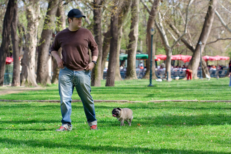 Download A walk in the park stock image. Image of enjoy, peaceful - 899349