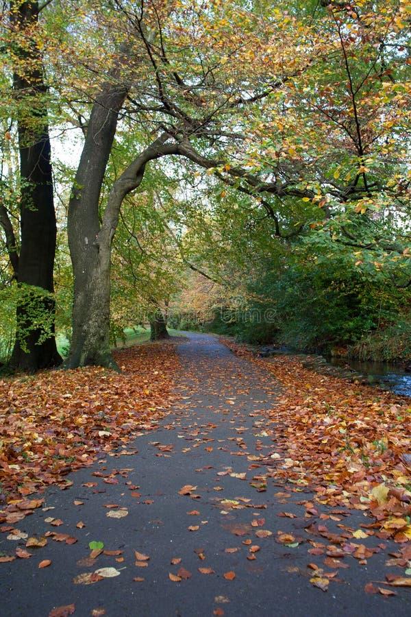 Walk pass autum. A walkway through a park in autum royalty free stock photo
