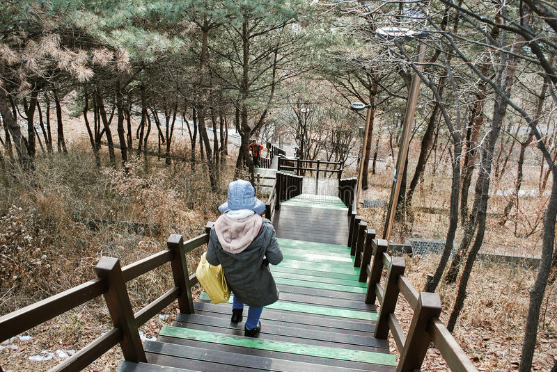 Walk path and beautiful Korea nature at hill top during winter season for travel concept stock image
