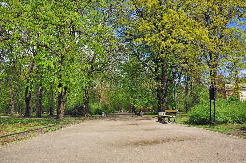 Walk in the spring park. A fascinating walk in the spring park in the midst of the green foliage of trees and babbling brook royalty free stock photos