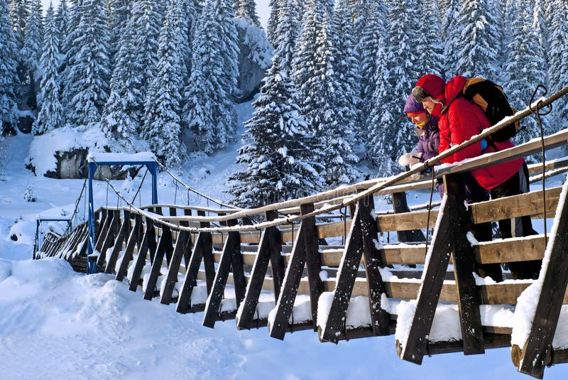 Walk on the suspension bridge on a frosty day royalty free stock images